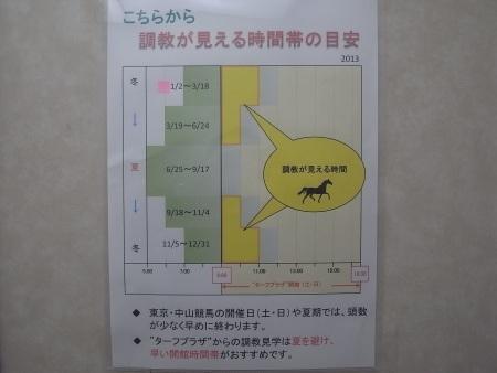 R0018242c.jpg