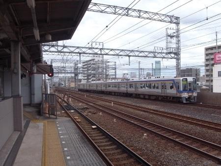 R0035646_1c.jpg